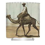 Noyes, Edward , Riding Camel Shower Curtain
