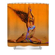 Nrg Sunset Shower Curtain