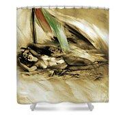 Nude 00210 Shower Curtain