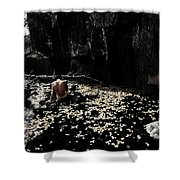 Nude In Monochrome  Leaf Pool Shower Curtain
