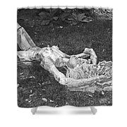 Nude In The Park Shower Curtain