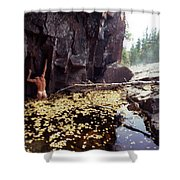 Nude Standing In A Leaf Pool  Shower Curtain