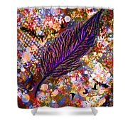 Nujabes' Feather Shower Curtain