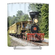 Number 17  Shower Curtain