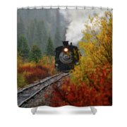 Number 482 Shower Curtain