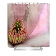Nuptial Shower Curtain