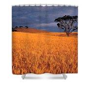 Nurture Nature Shower Curtain