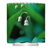Nurys Lilly Shower Curtain