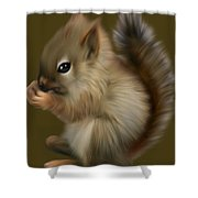 Nutkin Shower Curtain