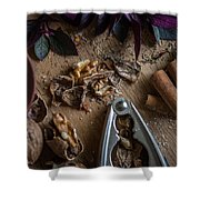 Nuts And Spices Series - Four Of Six Shower Curtain
