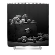 Nuts In Black And White Shower Curtain