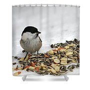 Nuts Said The Willow Shower Curtain