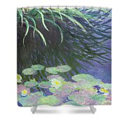 Nympheas Avec Reflets De Hautes Herbes Shower Curtain