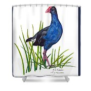 Nz Native Pukeko Bird Shower Curtain