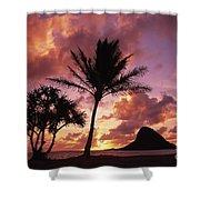 Oahu, Mokolii Island Shower Curtain