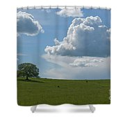 Oak After Storm Shower Curtain