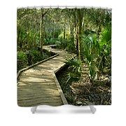 Oak Hammock Trail, Florida Shower Curtain
