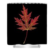 Autmn Leaf Shower Curtain