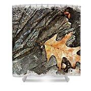 Oak Leaf On The Rocks Shower Curtain