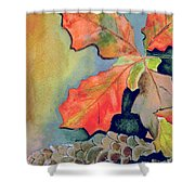 Oak Leaves And Pinecones Shower Curtain