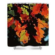 Oak Leaves In Autumn Shower Curtain