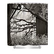 Oak Shadows On A Barn Shower Curtain