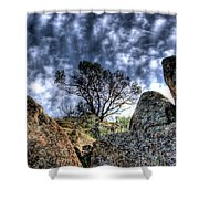 Oak Tree Shower Curtain
