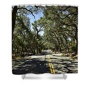 Oak Trees Along Live Oak Canyon Road Shower Curtain