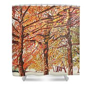 Oak Trees In The Park Shower Curtain