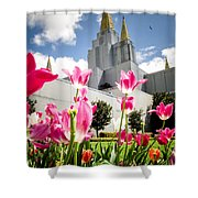 Oakland Pink Tulips Shower Curtain by La Rae  Roberts