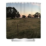 Oaks At Dusk Shower Curtain