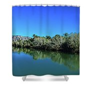 Oasis Reflection Shower Curtain