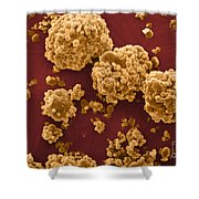 Oat Starch Grains Sem Shower Curtain
