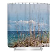 Oats On The Sand Shower Curtain