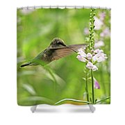 Obedient Attraction Shower Curtain