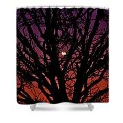 Ocala Moonrise Shower Curtain