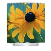 Ocealum 02 Shower Curtain