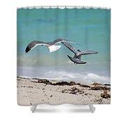 Ocean Birds Shower Curtain