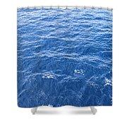 Ocean Blue Shower Curtain