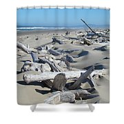 Ocean Coastal Art Prints Driftwood Beach Shower Curtain by Baslee Troutman