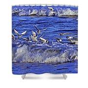 Ocean Delight 2 Shower Curtain