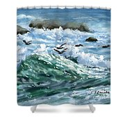 Ocean Waves And Pelicans Shower Curtain