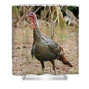 Oceola Turkey Shower Curtain
