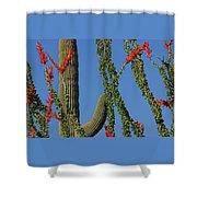 Ocotillo Majic Shower Curtain