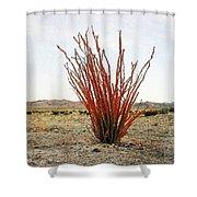 Ocotillo Plant Shower Curtain
