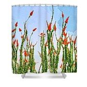 Ocotillo Shower Shower Curtain