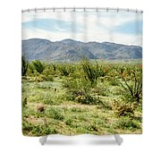 Octillo Field Shower Curtain