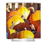 October Color Shower Curtain