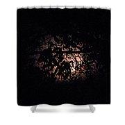 October Moon Shower Curtain
