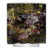 October Puddles Shower Curtain